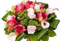 Buchete cale / Calla lily bouquets / http://www.florariamobila.ro/buchete-de-flori/buchete-cale.html