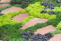 Garden and Yard.