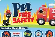 Pet Safety / by Petnet(io)