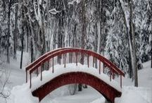Winter / let it´snow... :-)