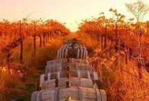 Autumn / very beautiful :-D