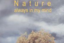 n a t u r e / as simple as beautiful like nature / by DAzulterrA Atmosferas