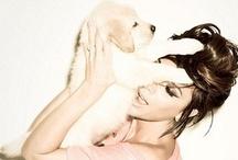 Terapeuttisia eläimiä