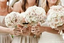 My Wedding / Ideas for my Wedding