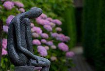 Garden / Un jardin, même tout petit, c'est la porte du paradis. A garden, even little, it's the gate of eden.