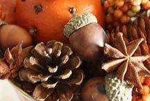 Goldener Herbst / Alles was den Herbst noch schöner macht: leckeres und saisonales Essen sowie Dekoration für drinnen und draußen