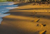 Melhores Praias do Brasil / Confira uma relação de praias imperdíveis para conhecer no próximo verão: tem praias incríveis no Nordeste, no Rio de Janeiro, em Santa Catarina. Enfim, o negócio é só jogar no mar