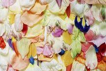 Colour | Texture
