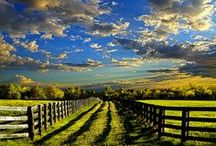Beautiful scenery *.*