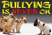 bullies are bad / This is a board where we can all band together and stop bullying......If you want to join this group board post a comment to me on a recent post or on the contact me board on my main page, and ill add you. (((***please don't pin non related things onto this board, or spam the board... or sadly I will ban you***)))