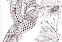 Coloriage d'oiseau-mouche