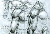 Anatomie - Mains - Bras / by Ivan Lammerant