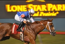 Lone Star Park / Texas Thoroughbred Racing