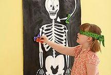 Skeleton / Δραστηριότητες και κατασκευές σχετικές με τον ανθρώπινι σκελετό και κόκκαλα