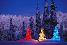 Most Beautiful Christmas Trees in the World / Τα καλύτερα και πιο όμορφα Χριστουγεννιάτικα δέντρα στον Κόσμο. Most beautiful Christmas trees in the world.