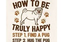 pugs /  pugs ONLY :D