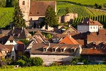The Vineyard in Alsace - Out now! / Book 2 - Set in France