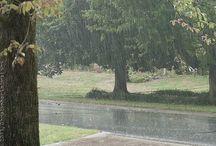 RAINY DAY / Rain / by MaryKay Newman