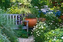 Garden inspiration / Ideas for our new home in Cape Town