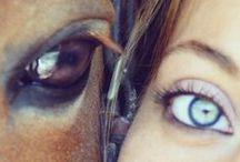 Equine Photography Ideas