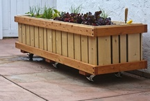 """M28 Rolling Planter, Portable, Mobile Planters on Wheels / Commercial Quality """"rolling planter"""" Grow almost anything in in the M28 planter you desire, best for plants that need deep roots.  Great height, 25,""""  for people who have back problems.  See pedestal series for taller.  Fully assembled. NOT A OVER PRICED KIT.   Planters made from (cedar & fir), case hardened and epoxy / glass coated screws / bolts, tri-ply liner, drains, locking industrial wheels. Designed, handmade by experience craftsmen in Ventura, California, USA 805.643.5902"""