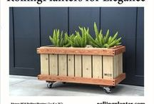 """M24 Rolling Planter """"Patio Rover"""" - Portable, Mobile Planters on Wheels / Commercial duty, sturdy """"rolling planter."""" Dimensions: 2 x 4' x 25.""""  Grow almost everything, great for plants that need deep roots, including trees!  Self watering and aquaponic options available, in same box.  Fully assembled (NOT A KIT).  Planters made from sustainably grown wood (cedar and fir), case hardened epoxy/ glass coated bolts/ screws ( NO NAILS, RODS, STAPLES ), heavy tri-ply pond liner, locking wheels and plumbed drains. Designed, handmade, shipped from Ventura, California, USA"""