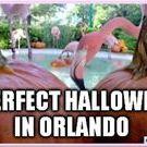 Halloween Travel Destinations Kaleidoscope Adventures / Halloween events, scary activities, kid friendly no-scary activities, Halloween, spooky opportunities, Halloween destinations, Halloween Travel