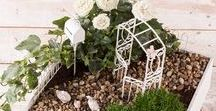 DIY Miniature Fairy Gardens / Dolls house, fairy garden and miniature model craft ideas for adults.