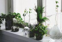 Green / Keep nature close