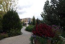 BYU - Idaho / The lovely BYU-Idaho campus in Rexburg, Idaho. I teach online for BYU-Idaho's awesome Pathway program! TrinaBoice.com