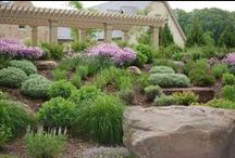Landscape Design Portfolio / A few samples of our Landscaping projects.