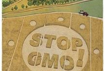 Say NO to GMOs / Nud fud is proud to be 100% free of GMOs and this is why ...