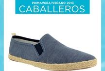 Modelos para Caballeros / Increíbles zapatos para hombres actuales.