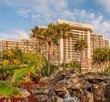 Our Resort | Hyatt Regency Grand Cypress