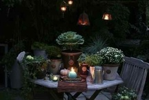 <3 Lovely Garden <3 / by 22 Vuurvliegjes