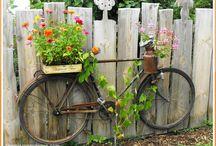 Passion 4 Gardening