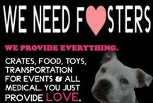 Things we need donated / Things we need