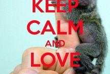 Monkey business #makesmesmile