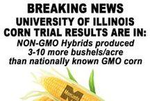 Monsanto: Agent Orange Manufacturer
