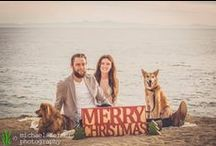 holiday photos: courtney & jake / Courtney and Jacob called us for some beachside photos with their pups for their holiday cards. We shot at Terenea Resort in Rancho Palos Verdes. Jacob is a member of the Los Angeles Kings hockey team, and Courtney works with a dog rescue. We were excited to meet them and happy to donate to rescue. 'Tis the season!