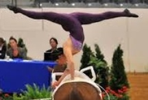 Equestrian Vaulting / Equestrian vaulting is pretty much gymnastics on horse back!