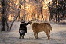 SEASONS   Winter Wonderland / by Agata Toczek