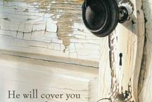 Bible  / by Jonna Dingus
