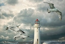Lighthouses / by Suzanne Peirsel