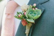 Bouquets & Succulents / Speer-Sharpe Wedding  / by Prilla Speer