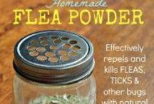 Homemade flea, tick, and cat repellants etc