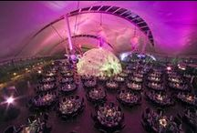 Christmas Party Nights / Outstanding Christmas Party Nights at Dynamic Earth