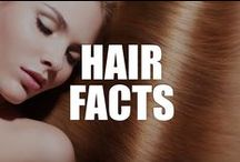 Red Hair Facts / Explore the wild, colorful, and always amazing world of red hair with our interesting hair facts!