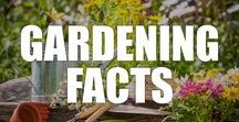 Gardening Facts / Cicero once said all he needs in life is a library and garden. Find out all best gardening facts here, including tips, history, statistics, cultural influences and more.