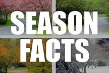 Season Facts / Experience spring flowers, summer sun, fall leaves, and winter blues with our interesting season facts, infographics, and videos.
